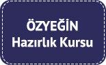 ozyegin-universitesi