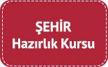 sehir-universitesi-logo