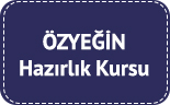 ozyegin-universitesi